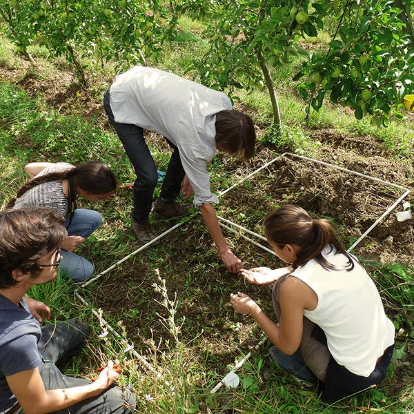 Agro-écologie et gestion des ressources