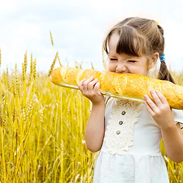 Aliments et nutrition-santé