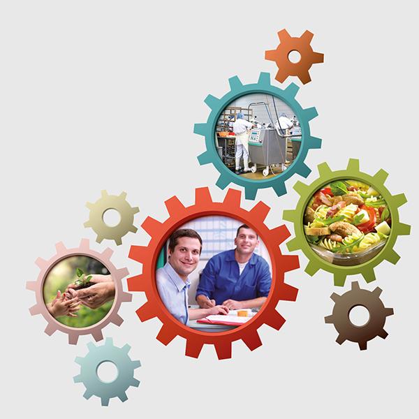 Management QRSE des filières alimentaires