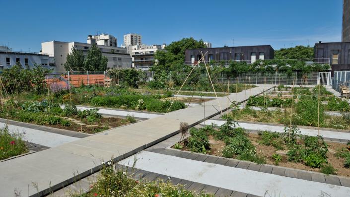 agri-urbaine