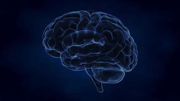 neurocentre-magendie