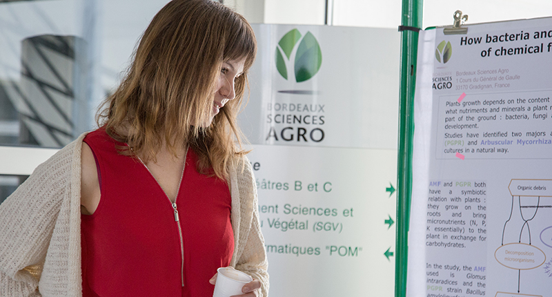 bordeaux-sciences-agro-licence-masters-2