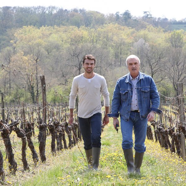 Transmission de domaines viticoles