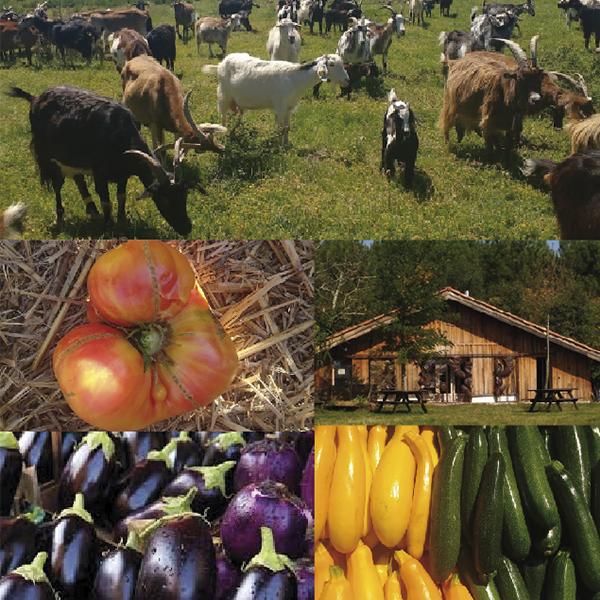 Agricultures, proximité et territoires d'ici et d'ailleurs