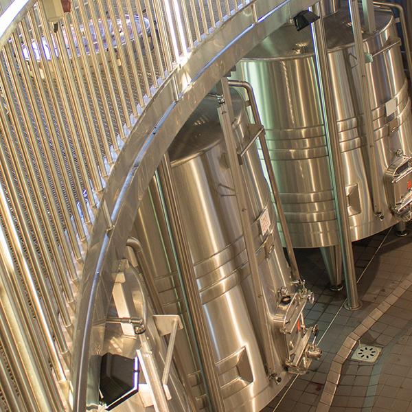 Bordeaux Winemaking Specificities