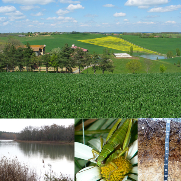 Gestion des Ressources et de l'Environnement