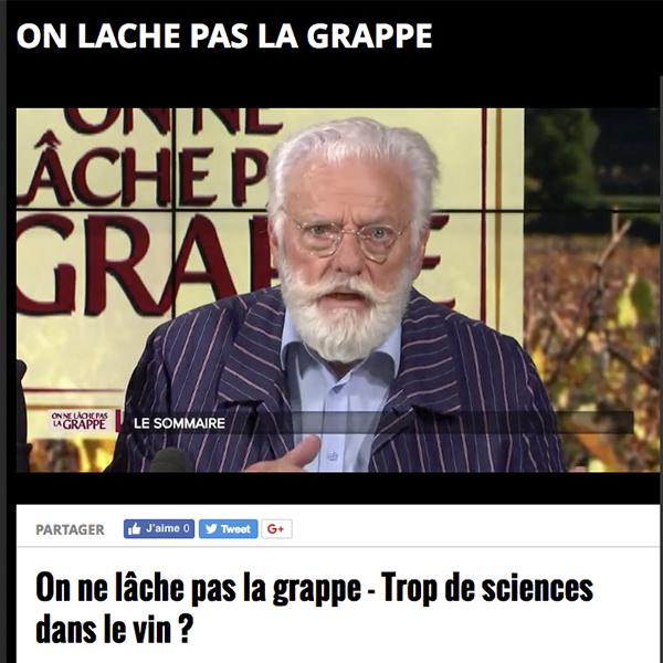 """Revoir l'émission """"On ne lâche pas la Grappe"""" – TV7 Bordeaux"""