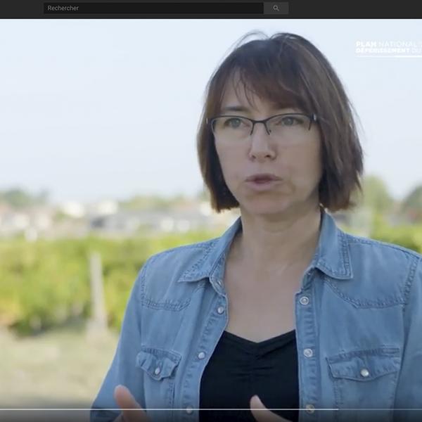 Recherche : octobre 2018, lancement du projet Vitirhizobiome