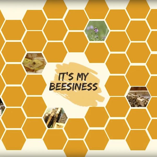 """""""It's my BEEsiness"""": le projet de deux étudiants en césure"""